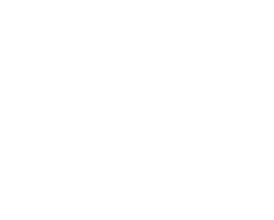 virgin-retailer-white